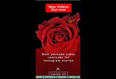 Youtube Channel Promotion 🌹 as Instagram Story – 2020020607